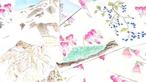 山と高山植物の絵はがき