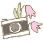 花とカメラ